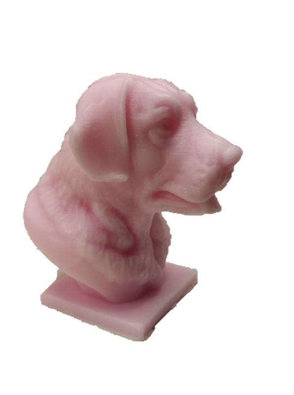 Labrador op sockel mal