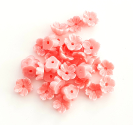 Koraal kraal bloem roze coral