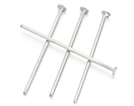 Nietstiften 20 mm zilver RVS