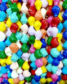 Koraal kraal schelp mix kleur