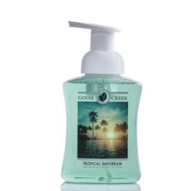 Tropical Daydream  Gentle Foaming Handsoap