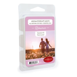 Candlewarmers  Romance Waxmelt