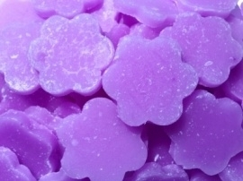Parma Violet Little Hottie