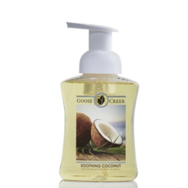 Soothing Coconut  Gentle Foaming Hand Soap