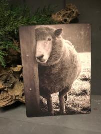 Bordje Nostalgisch afbeelding  schaap