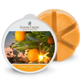 Orange Grove Tree  Goose Creek Wax Melt