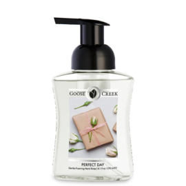 Perfect Day Gentle Foaming Hand Soap