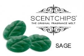 Scentchips Sage