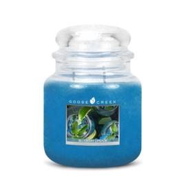 Blueberry Limeade Goose Creek Candle  90 Branduren