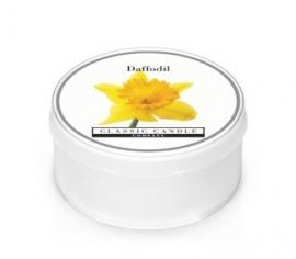 Daffodil Classic Candle MiniLight