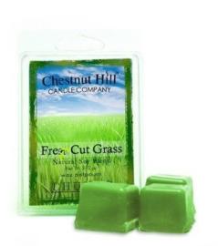 Chestnut Hill Candles Soja Wax Melt  Fresh Cut Grass