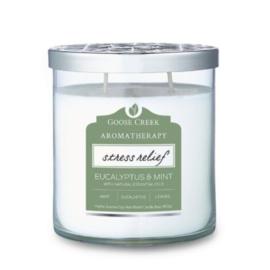 Eucalyptus & Mint Goose Creek Aromatherapie Candle 453 gram