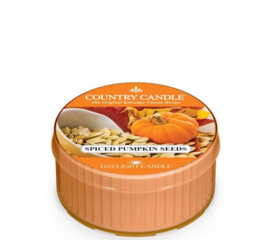 Spiced Pumpkin Seeds Country Candle Daylight