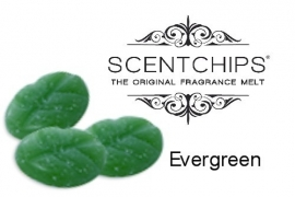Scentchips Mix Boughs of Holly