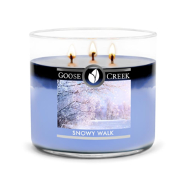 Snowy Walk Goose Creek Candle 3 Wick Soy Blend Tumbler