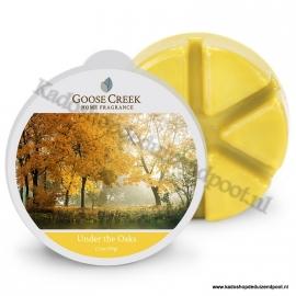 Under the Oaks Goose Creek 1 Waxmelt blokje