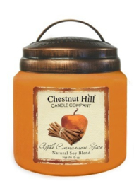 Chestnut Hill Apple Cinnamon Spice   2 wick Candle 450 Gr