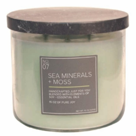 Sea Minerals & Moss Village Candle Soy Blended 3 wick