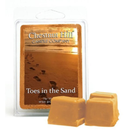 Chestnut Hill Candles Soja Wax Melt  Toes In the Sand