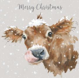 """Wrendale Designs Kerstkaart Box Set van 8 Kaarten """"First Taste of Snow"""" Cow"""