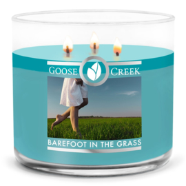 Barefoot in the grass Goose Creek Candle   3 Wick Tumbler