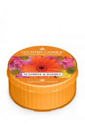 Sunshine & Daisies Country Candle  Daylight