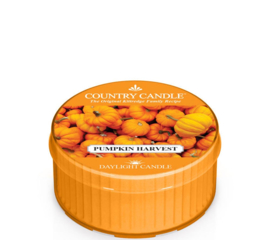 Pumpkin  Harvest  Country Candle Daylight