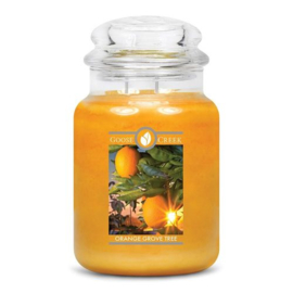 Orange Grove Tree  Goose Creek Candle Large 150 Branduren
