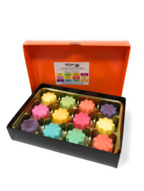 "Busy Bee Wax Melts Selectie Kadosbox ""Summer"""