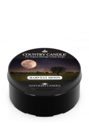 Harvest Moon Country Candle   Daylight