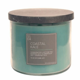 Coastal Kale Village Candle Soy Blended 3 wick