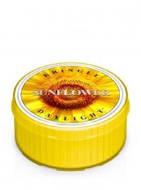 Sunflower Kringle Candle  Daylight