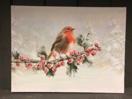 Led Canvas Robin 30 x 40