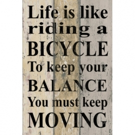 Tekstbord Life is like riding a Bicycle