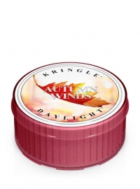 Autumn Winds Kringle Candle Daylight