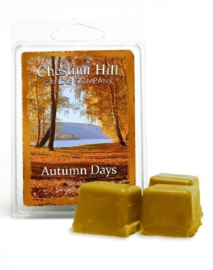 Chestnut Hill Candles Soja Wax Melt  Autumn Days