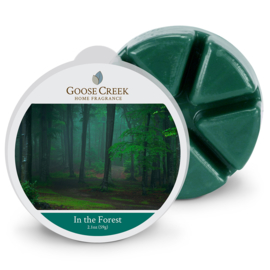 In the Forest  Goose Creek Candle 1 Wax Melt blokje