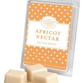 Apricot Nectar Polka Dots Wax Melt