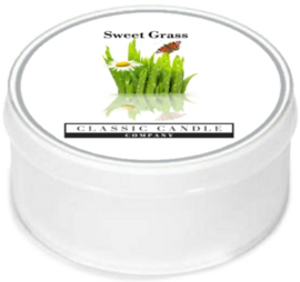 Sweet Grass  Classic Candle MiniLight