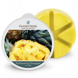 Exhilarating Pineapple Goose Creek Waxmelt