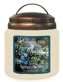 Chestnut Hill  Spruceberry  2 wick Candle 450 Gr