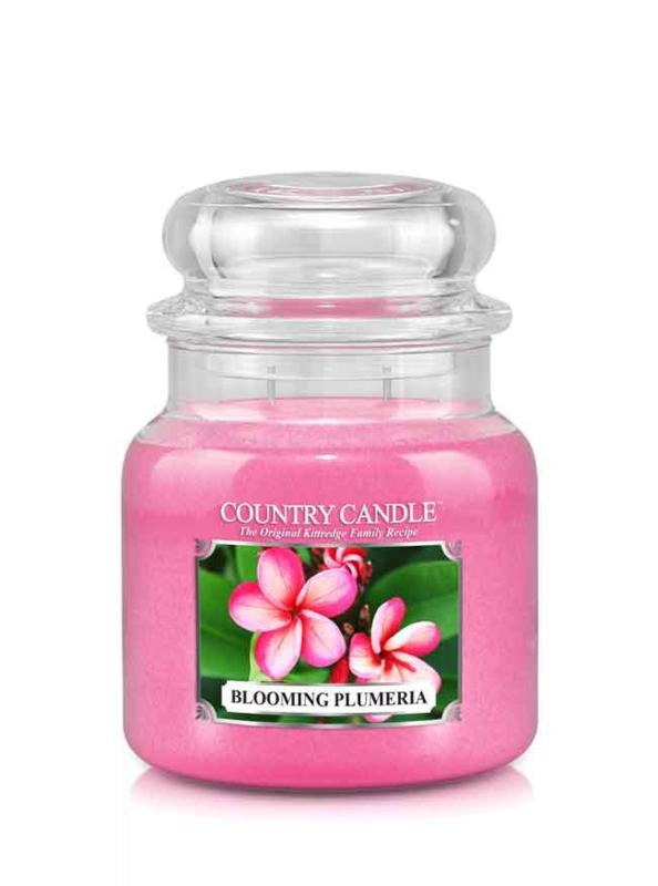 Blooming Plumeria Country Candle Medium Jar 16oz