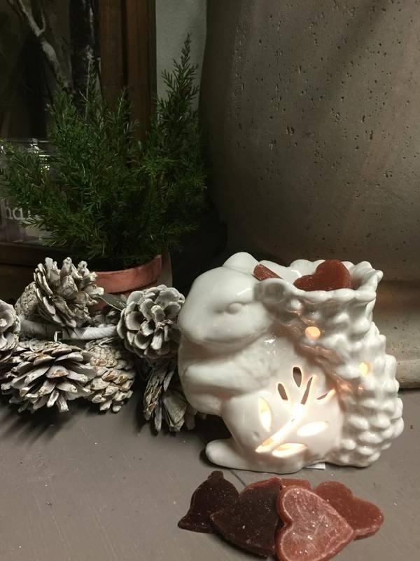 White Geurbrander Eekhoorn
