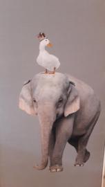 Prikbord olifant 75x130cm
