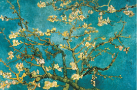 Bloosem van Gogh