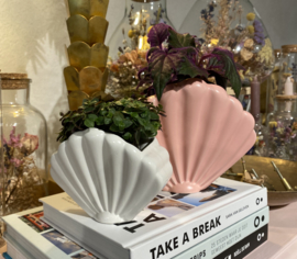 Shell pink large planter