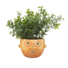My kind of people mini planter Ross