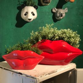 Plantenpot 'Red lips'