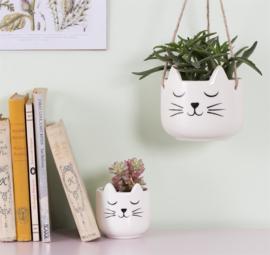Mini plantenpot kat