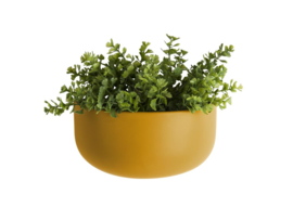 PT wand plantenpot  Oval (2 kleuren)